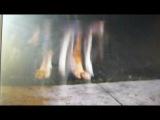 крошка из Беверли Хилз 2 отрывок